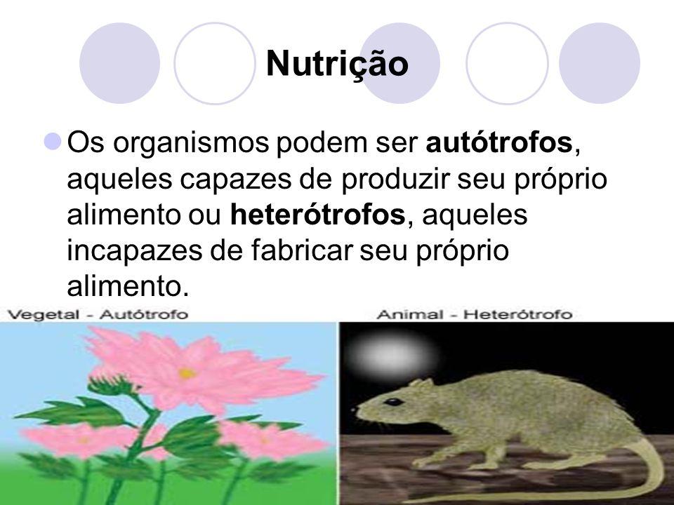 Nutrição Os organismos podem ser autótrofos, aqueles capazes de produzir seu próprio alimento ou heterótrofos, aqueles incapazes de fabricar seu próprio alimento.