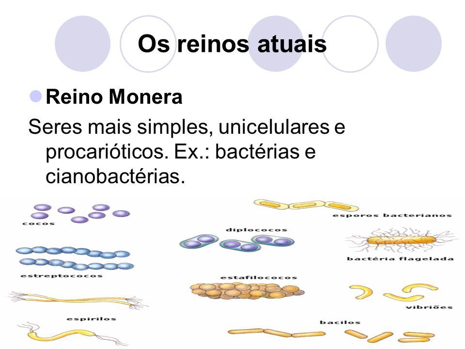 Os reinos atuais Reino Monera Seres mais simples, unicelulares e procarióticos. Ex.: bactérias e cianobactérias.