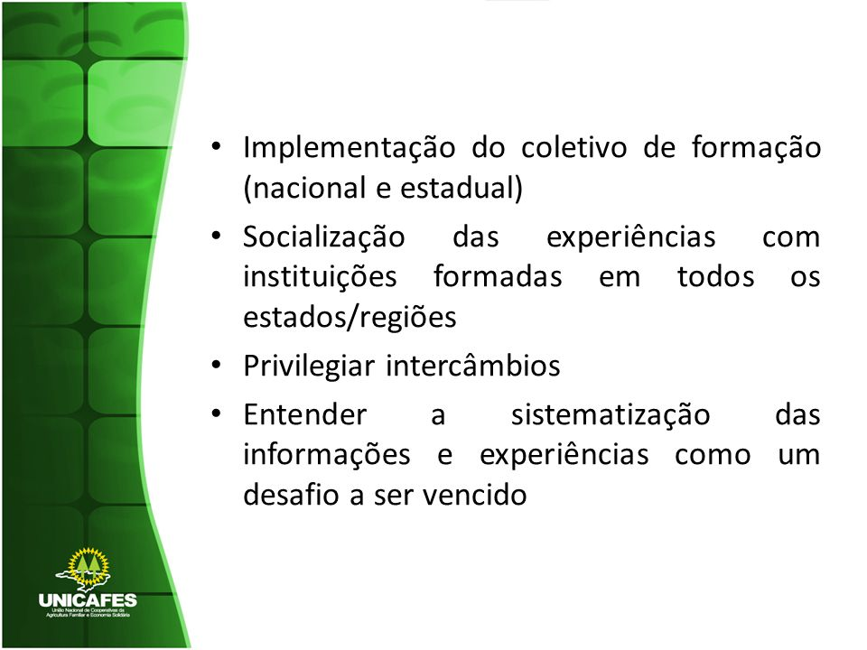 Implementação do coletivo de formação (nacional e estadual) Socialização das experiências com instituições formadas em todos os estados/regiões Privilegiar intercâmbios Entender a sistematização das informações e experiências como um desafio a ser vencido