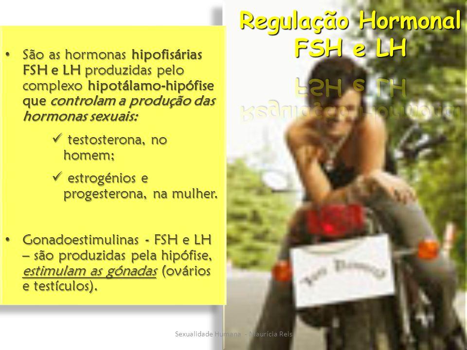 São as hormonas hipofisárias FSH e LH produzidas pelo complexo hipotálamo-hipófise que controlam a produção das hormonas sexuais: São as hormonas hipofisárias FSH e LH produzidas pelo complexo hipotálamo-hipófise que controlam a produção das hormonas sexuais: testosterona, no homem; testosterona, no homem; estrogénios e progesterona, na mulher.
