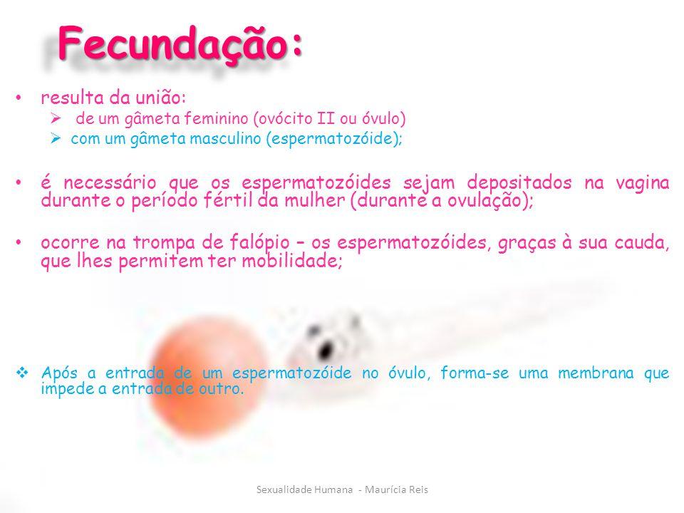 Fecundação:Fecundação: resulta da união:  de um gâmeta feminino (ovócito II ou óvulo)  com um gâmeta masculino (espermatozóide); é necessário que os