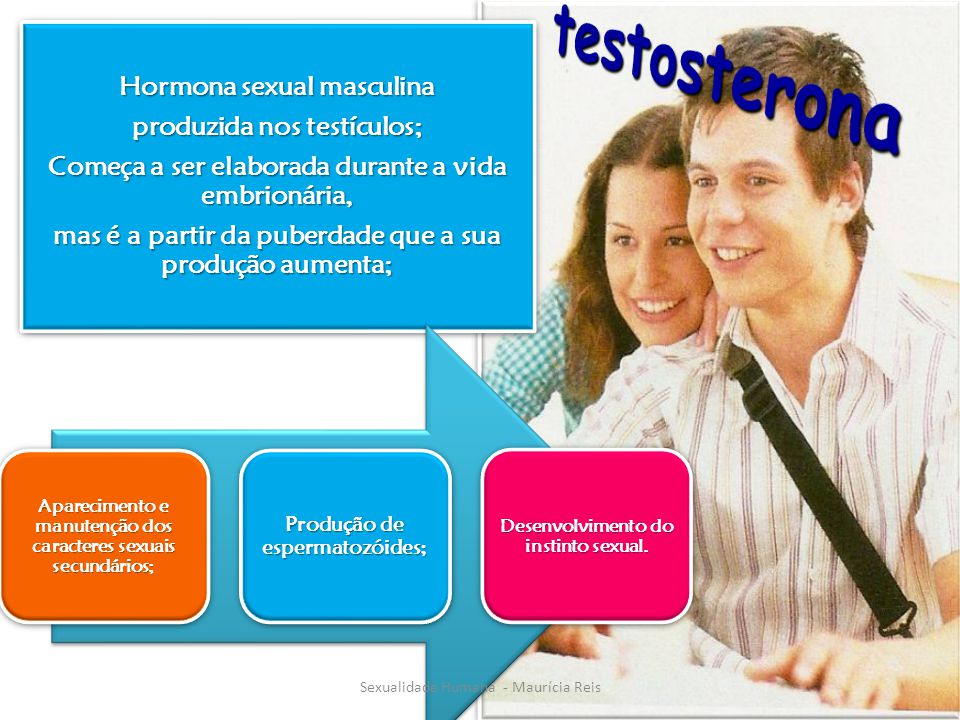 Hormona sexual masculina produzida nos testículos; Começa a ser elaborada durante a vida embrionária, mas é a partir da puberdade que a sua produção aumenta; Aparecimento e manutenção dos caracteres sexuais secundários; Produção de espermatozóides; Desenvolvimento do instinto sexual.