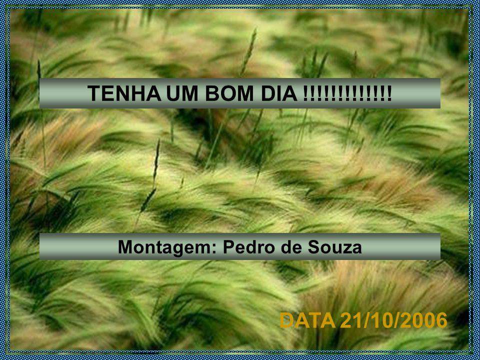 TENHA UM BOM DIA !!!!!!!!!!!!! Montagem: Pedro de Souza DATA 21/10/2006