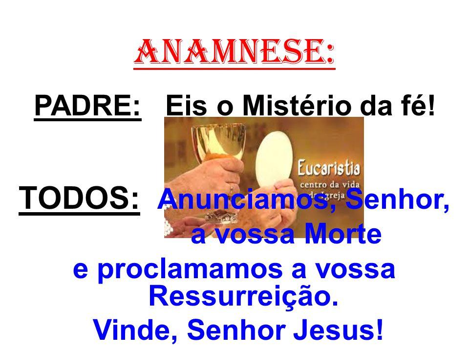 ANAMNESE: PADRE: Eis o Mistério da fé! TODOS: Anunciamos, Senhor, a vossa Morte e proclamamos a vossa Ressurreição. Vinde, Senhor Jesus!