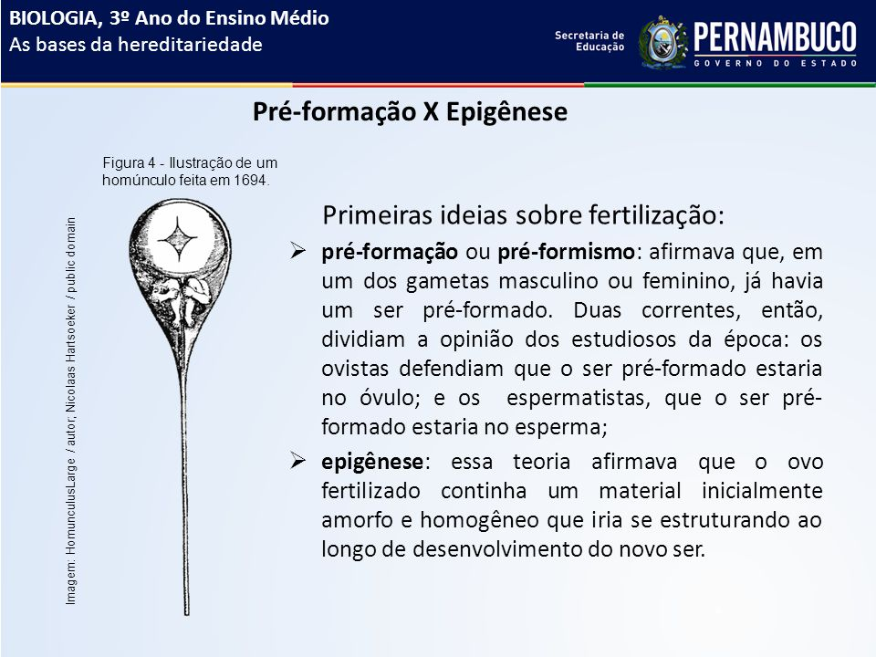 Pré-formação X Epigênese  pré-formação ou pré-formismo: afirmava que, em um dos gametas masculino ou feminino, já havia um ser pré-formado.