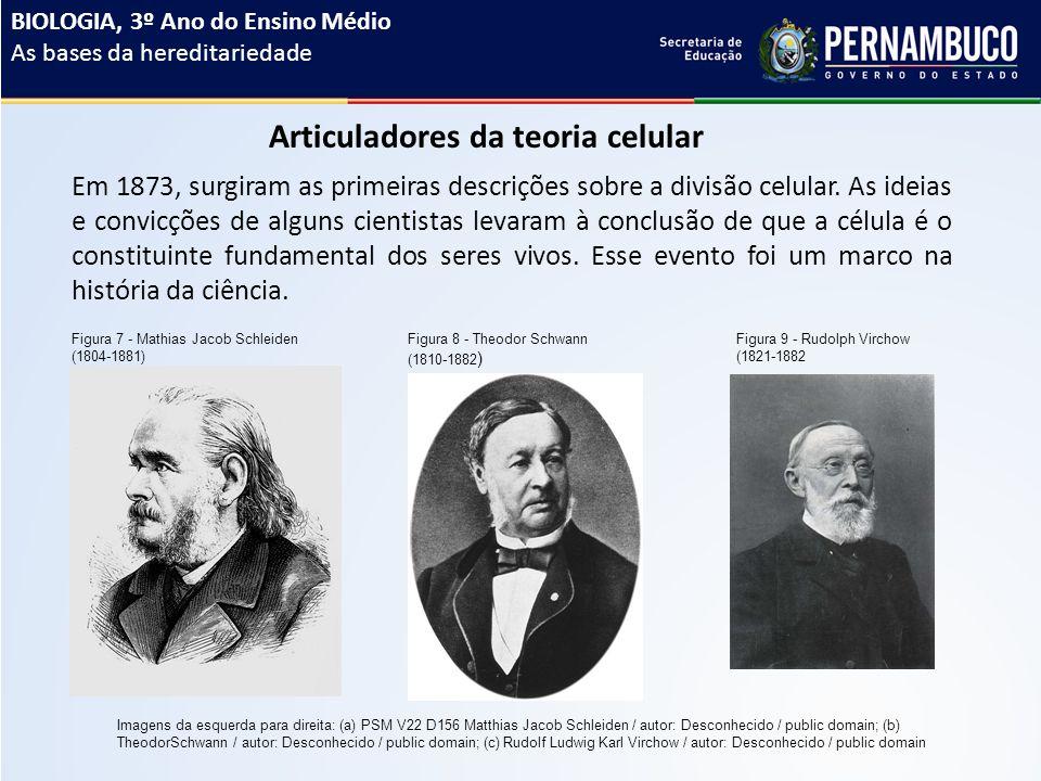 Articuladores da teoria celular Em 1873, surgiram as primeiras descrições sobre a divisão celular.