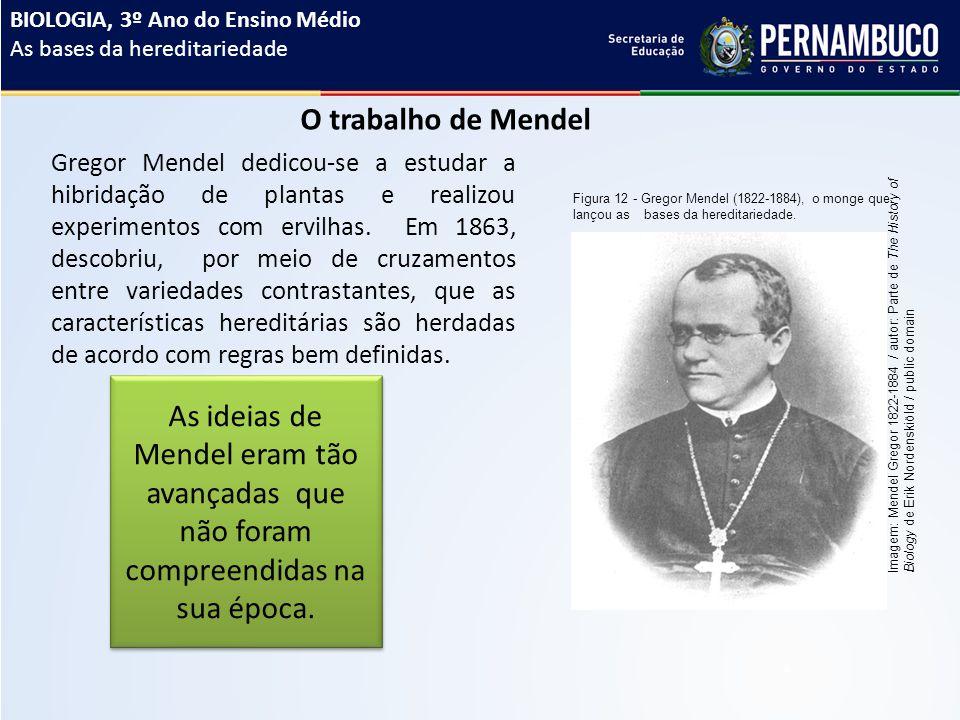 O trabalho de Mendel Gregor Mendel dedicou-se a estudar a hibridação de plantas e realizou experimentos com ervilhas.