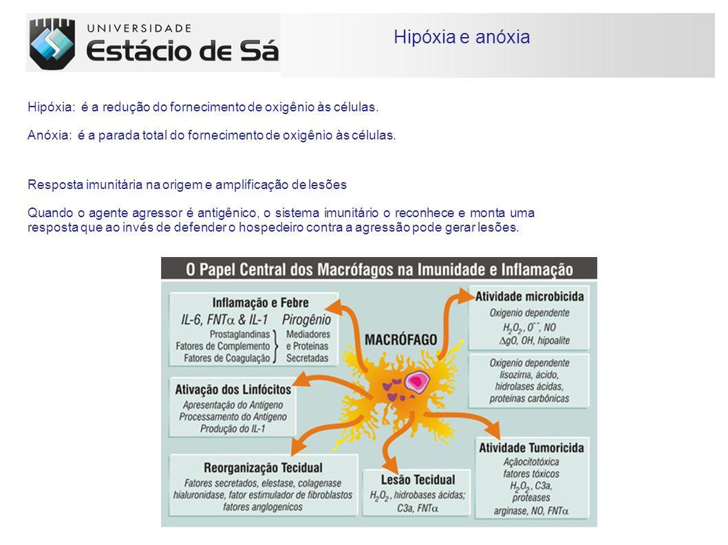 Hipóxia e anóxia Hipóxia: é a redução do fornecimento de oxigênio às células.