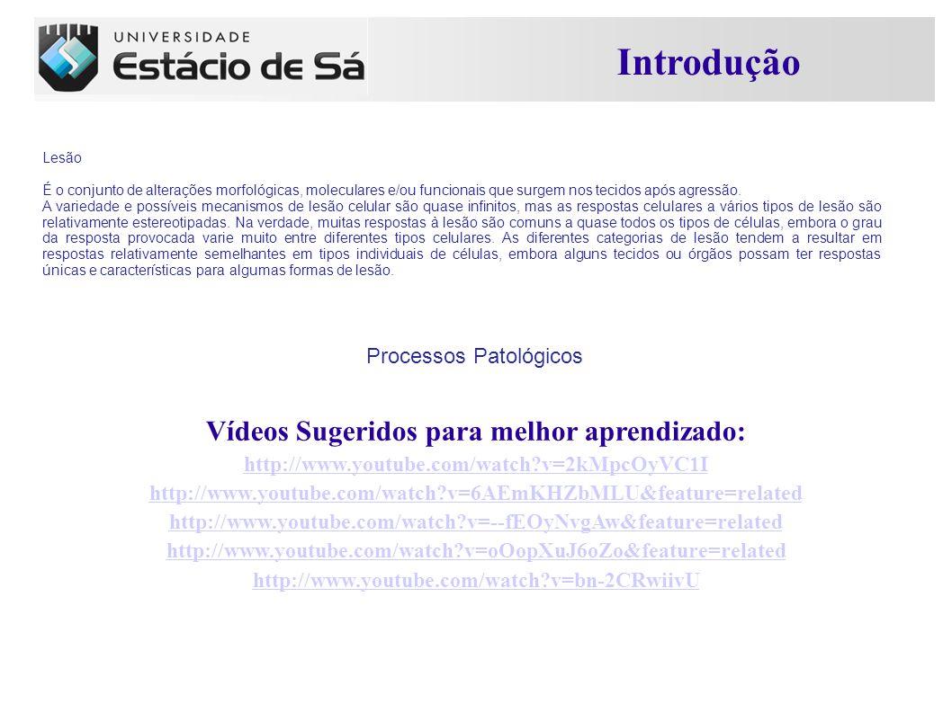 Introdução Vídeos Sugeridos para melhor aprendizado: http://www.youtube.com/watch?v=2kMpcOyVC1I http://www.youtube.com/watch?v=6AEmKHZbMLU&feature=related http://www.youtube.com/watch?v=--fEOyNvgAw&feature=related http://www.youtube.com/watch?v=oOopXuJ6oZo&feature=related http://www.youtube.com/watch?v=bn-2CRwiivU Lesão É o conjunto de alterações morfológicas, moleculares e/ou funcionais que surgem nos tecidos após agressão.