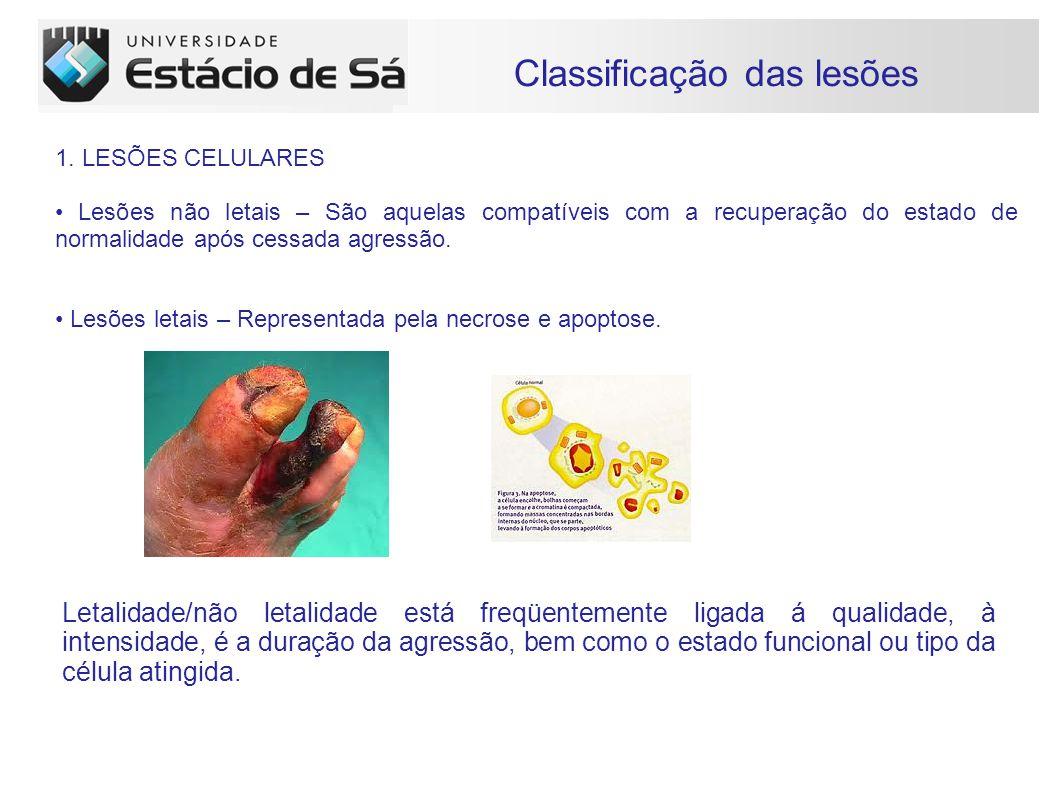 Carboidratos Classificação das lesões 1.