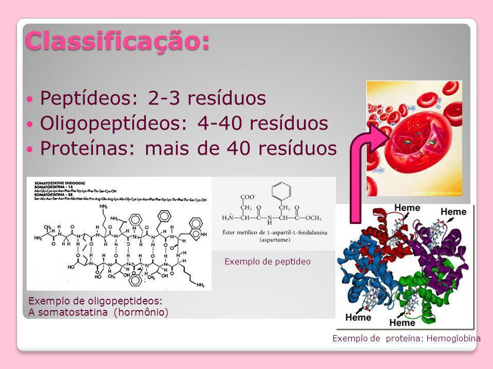 Classificação: Peptídeos: 2-3 resíduos Oligopeptídeos: 4-40 resíduos Proteínas: mais de 40 resíduos Exemplo de oligopeptideos: A somatostatina (hormônio) Exemplo de peptideo Exemplo de proteína: Hemoglobina