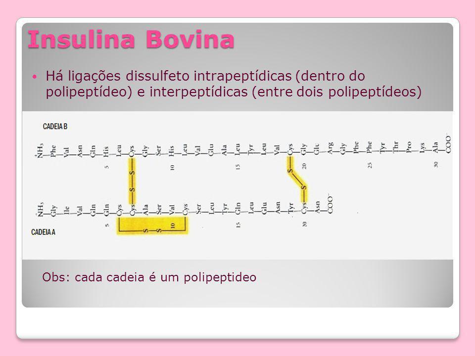 Insulina Bovina Há ligações dissulfeto intrapeptídicas (dentro do polipeptídeo) e interpeptídicas (entre dois polipeptídeos) Obs: cada cadeia é um polipeptideo