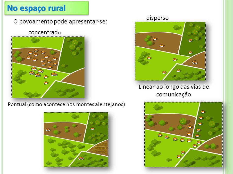 No espaço rural O povoamento pode apresentar-se: Pontual (como acontece nos montes alentejanos) concentrad o disperso Linear ao longo das vias de comunicação