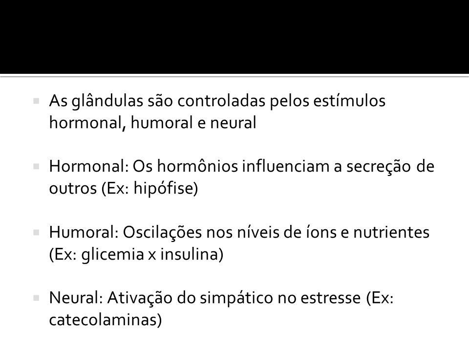  As glândulas são controladas pelos estímulos hormonal, humoral e neural  Hormonal: Os hormônios influenciam a secreção de outros (Ex: hipófise)  H