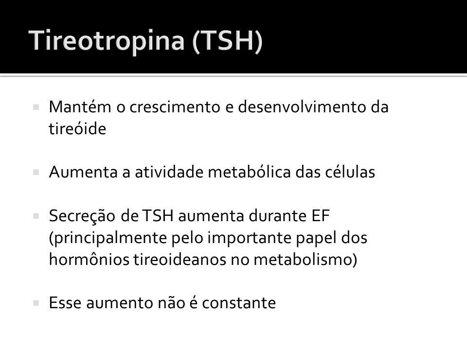  Mantém o crescimento e desenvolvimento da tireóide  Aumenta a atividade metabólica das células  Secreção de TSH aumenta durante EF (principalmente
