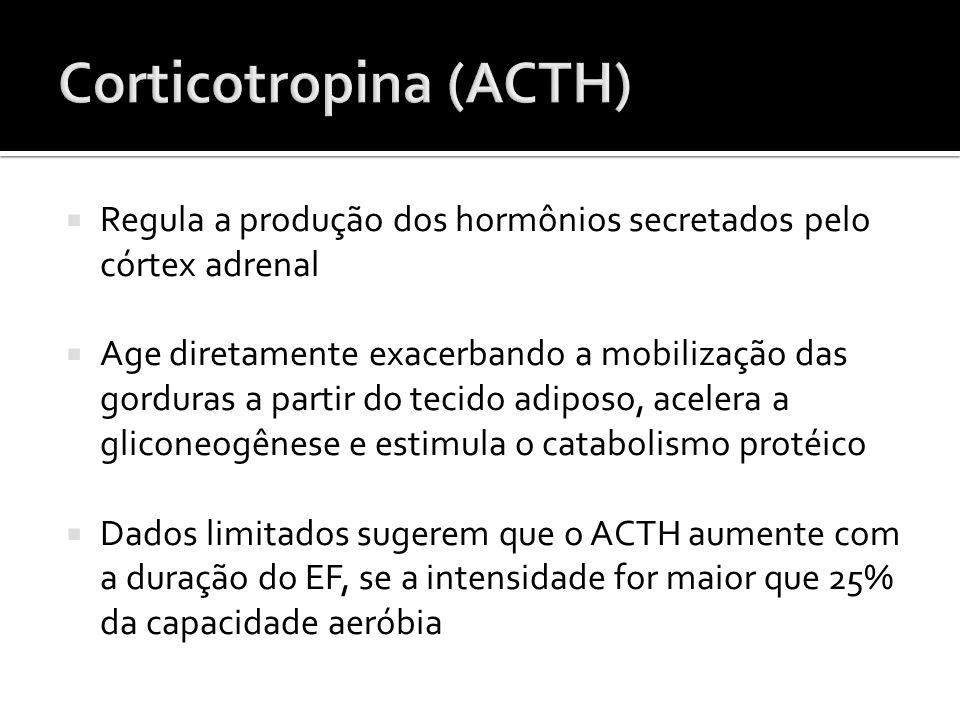  Regula a produção dos hormônios secretados pelo córtex adrenal  Age diretamente exacerbando a mobilização das gorduras a partir do tecido adiposo,