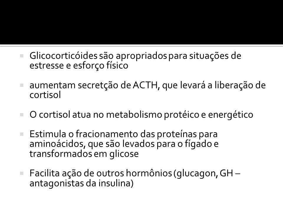  Glicocorticóides são apropriados para situações de estresse e esforço físico  aumentam secretção de ACTH, que levará a liberação de cortisol  O co