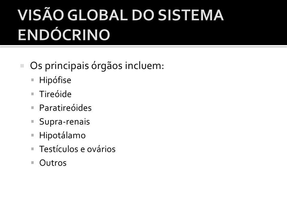  Os principais órgãos incluem:  Hipófise  Tireóide  Paratireóides  Supra-renais  Hipotálamo  Testículos e ovários  Outros