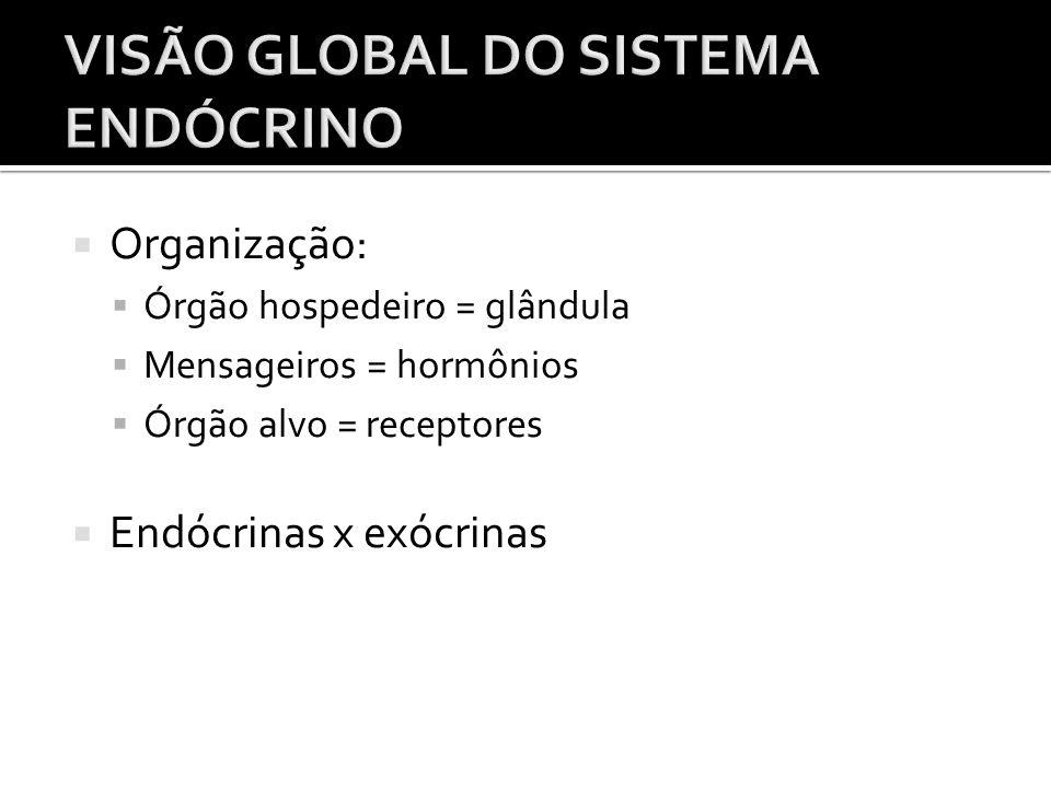  Organização:  Órgão hospedeiro = glândula  Mensageiros = hormônios  Órgão alvo = receptores  Endócrinas x exócrinas