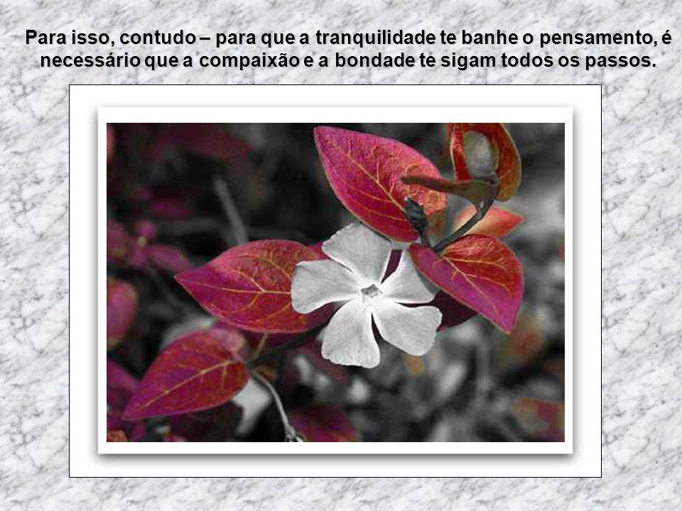 Música: Walts of love Formatação: VAL RUAS Se quiser conhecer outras mensagens clique aqui: http://valruas.wordpress.com http://valruas.wordpress.com