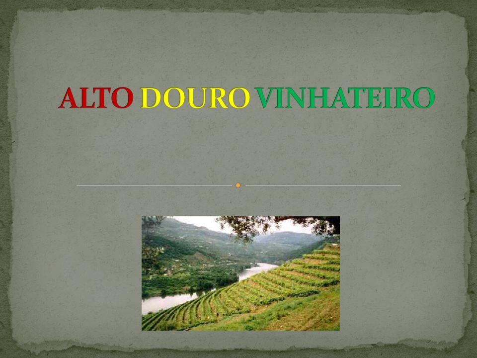 Classificado como Património Mundial pela UNESCO em 2001, a região do Alto Douro Vinhateiro, caracteriza-se por uma paisagem única, que urge preservar, evitando a sua lenta transformação.