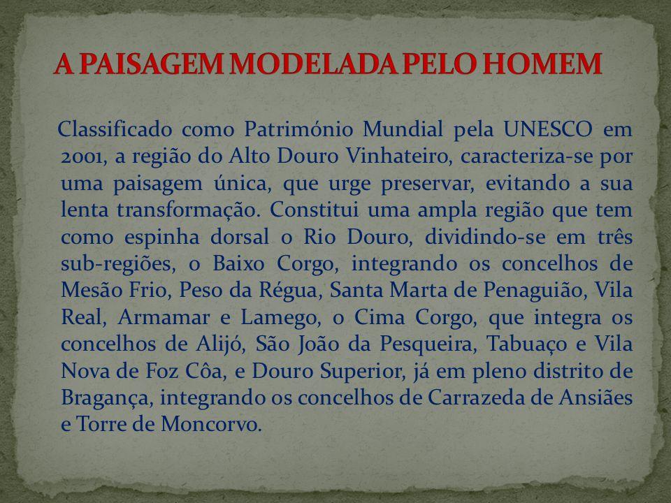 Classificado como Património Mundial pela UNESCO em 2001, a região do Alto Douro Vinhateiro, caracteriza-se por uma paisagem única, que urge preservar