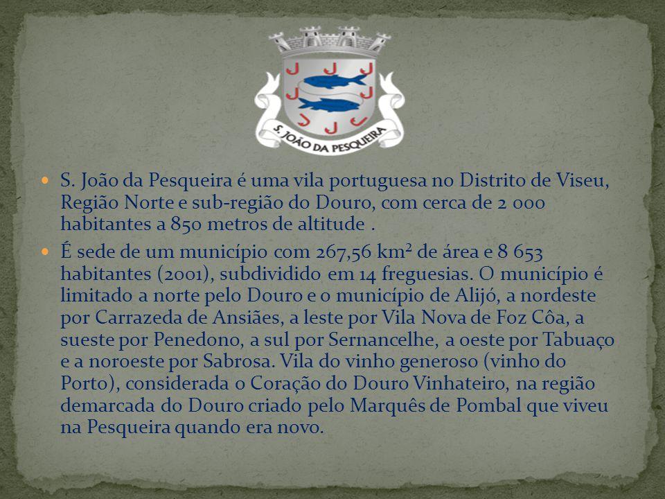 S. João da Pesqueira é uma vila portuguesa no Distrito de Viseu, Região Norte e sub-região do Douro, com cerca de 2 000 habitantes a 850 metros de alt