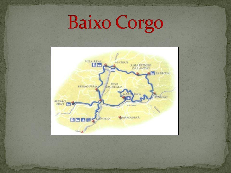 Mesão Frio é uma vila portuguesa pertencente ao Distrito de Vila Real, Região Norte e sub-região do Douro.