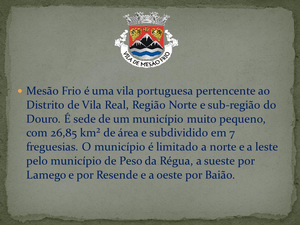 Mesão Frio é uma vila portuguesa pertencente ao Distrito de Vila Real, Região Norte e sub-região do Douro. É sede de um município muito pequeno, com 2