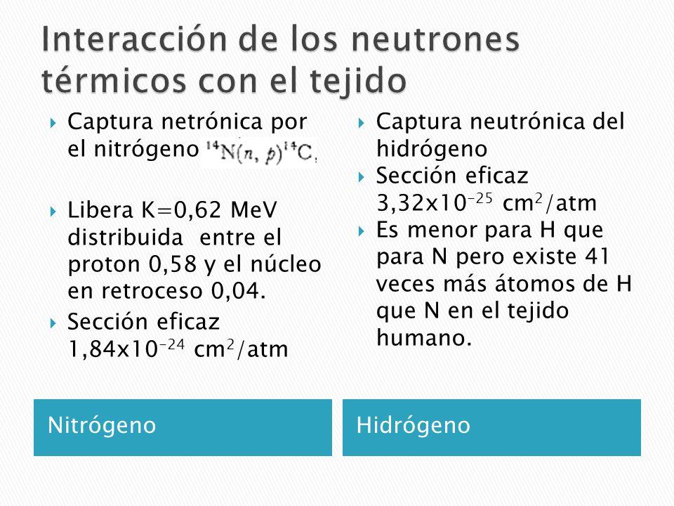 NitrógenoHidrógeno  Captura netrónica por el nitrógeno  Libera K=0,62 MeV distribuida entre el proton 0,58 y el núcleo en retroceso 0,04.  Sección