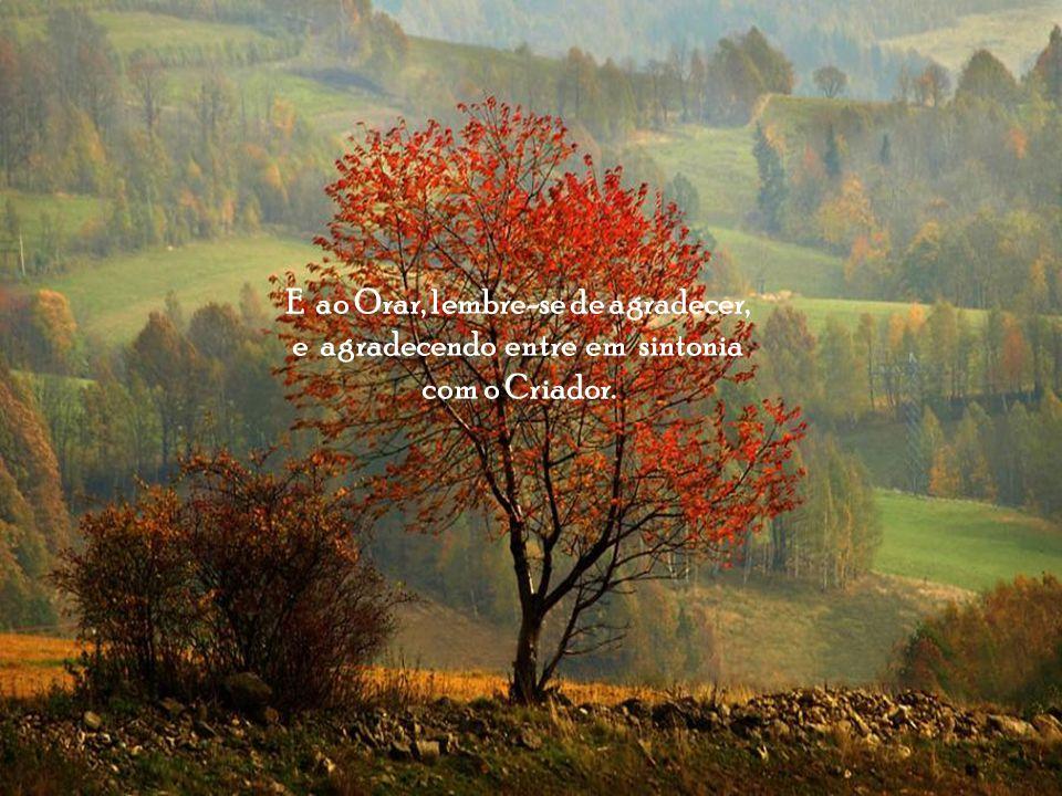 Descobrindo Jesus possa perdoar os que te ofenderam, e perdoando, tenha tempo para praticar o bem, aprender a não julgar e não julgando viver na simplicidade e lembrar de ORAR.