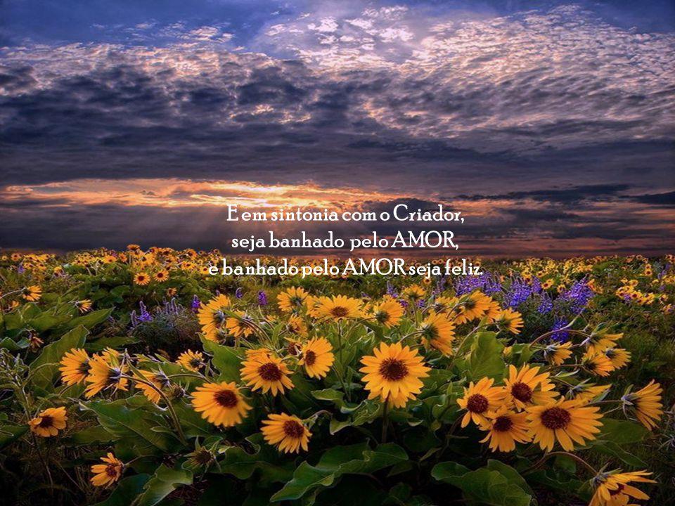 E ao Orar, lembre-se de agradecer, e agradecendo entre em sintonia com o Criador.