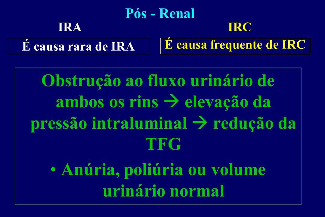 Fisiopatologia - IRA NTA Obstrução Tubular