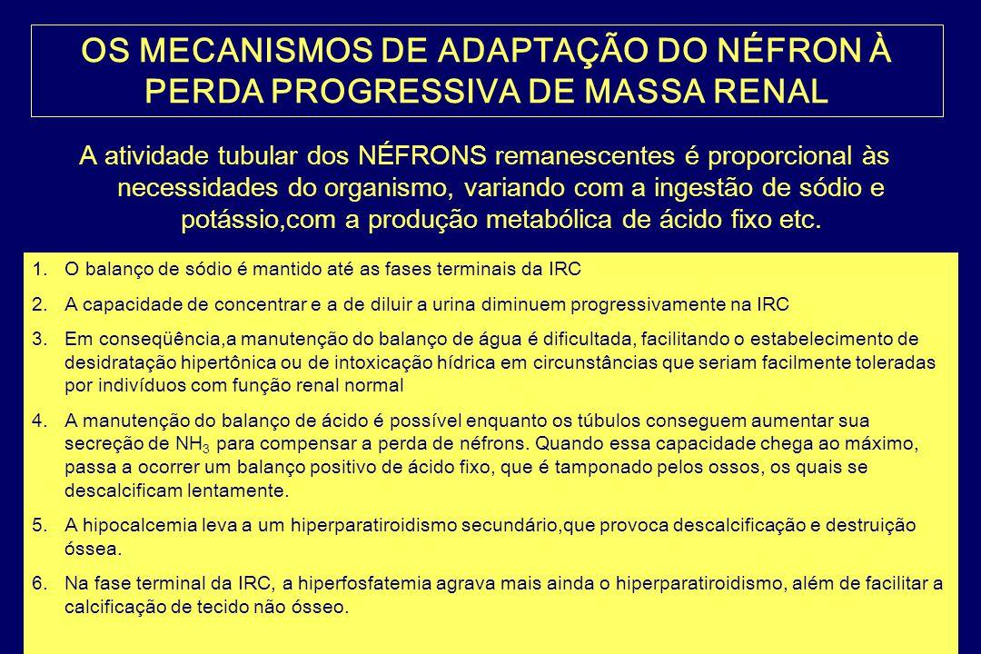 FISIOPATOLOGIA DRC DOENÇA RENAL DE BASE DESTRUIÇÃO DE NÉFRONS OCORRE ACÚMULO NA CORRENTE SANGUÍNEA DE SUBSTÂNCIAS QUE SÃO NORMALMENTE EXCRETADAS PELOS