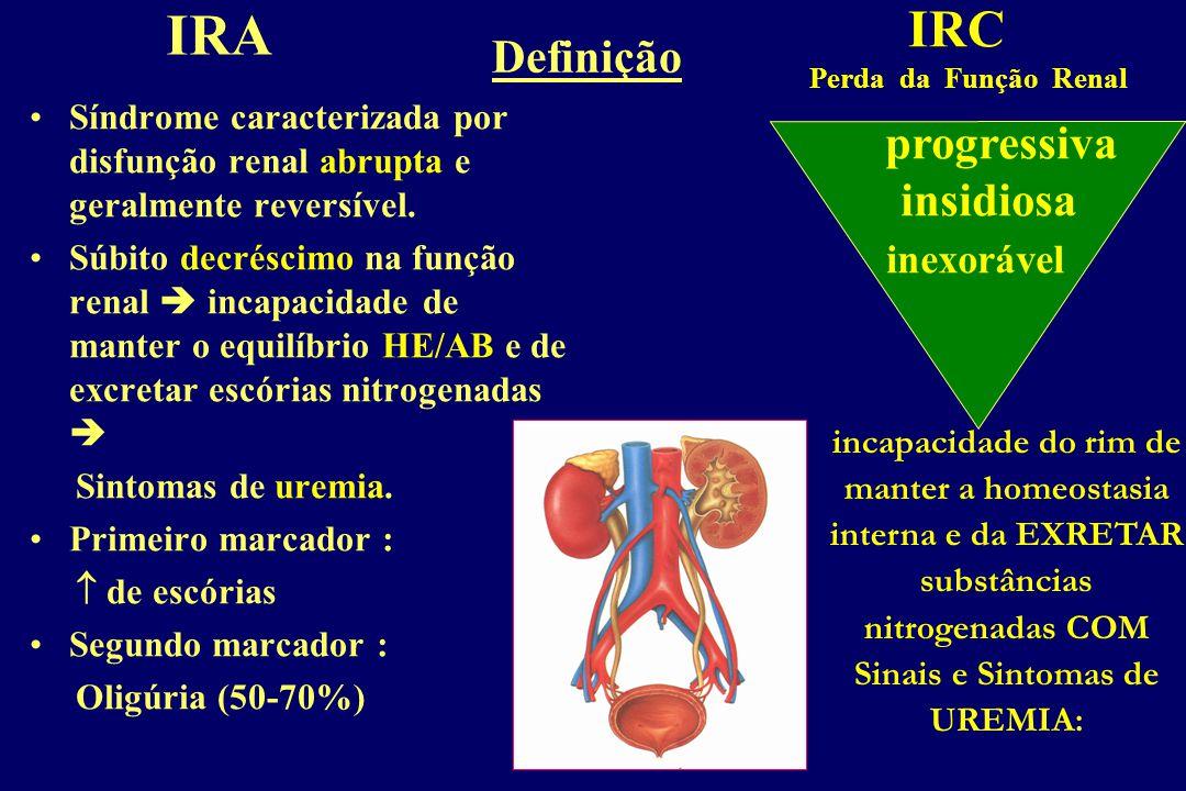 Sindromes Renais 2.Síndrome nefrítico e nefrótico. 6.Anormalidades tubulares 5.Obstrução do trato urinário. 4.ITU. 1.Anormalidades urinárias assintomá