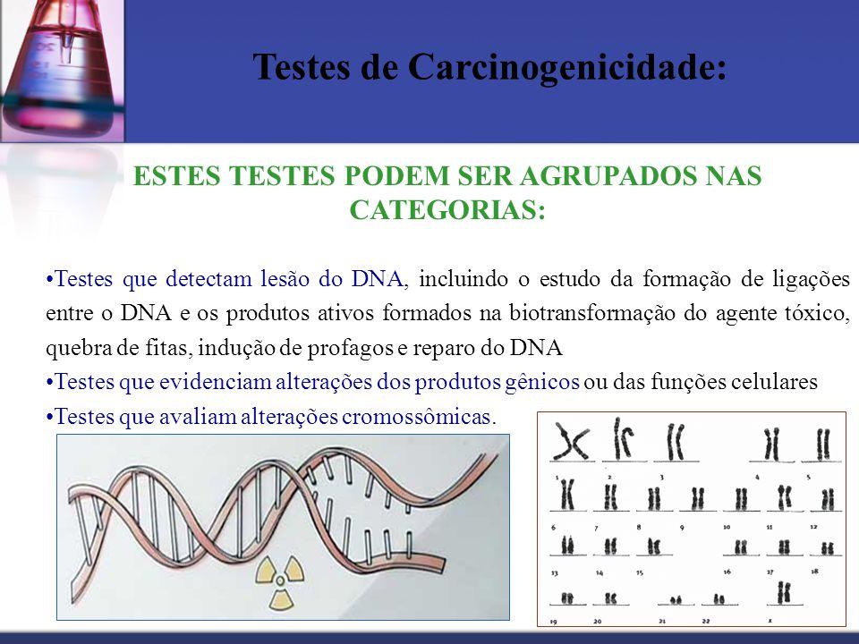 Testes de Carcinogenicidade: ESTES TESTES PODEM SER AGRUPADOS NAS CATEGORIAS: Testes que detectam lesão do DNA, incluindo o estudo da formação de liga