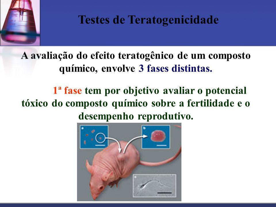 Testes de Teratogenicidade A avaliação do efeito teratogênico de um composto químico, envolve 3 fases distintas. 1ª fase tem por objetivo avaliar o po