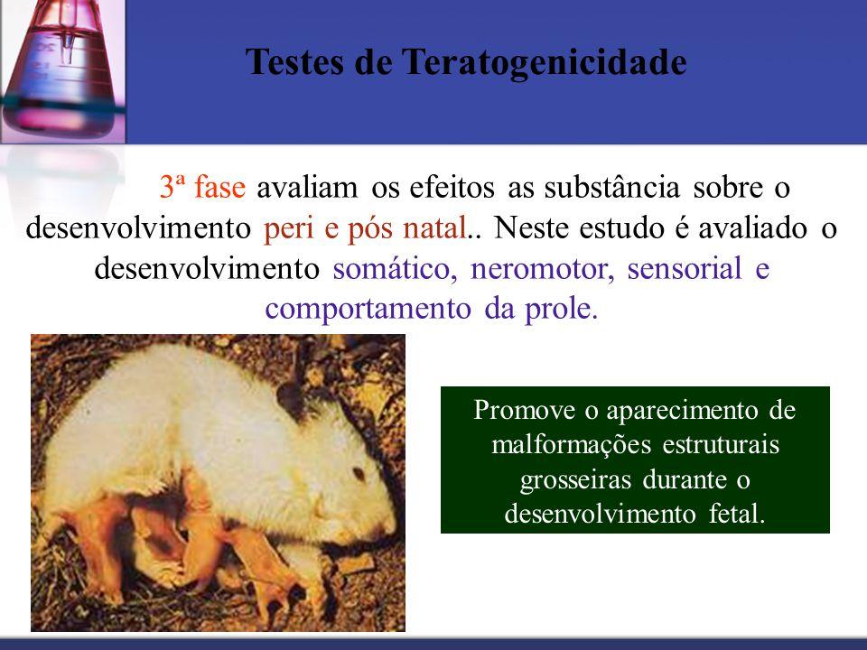 Testes de Teratogenicidade 3ª fase avaliam os efeitos as substância sobre o desenvolvimento peri e pós natal.. Neste estudo é avaliado o desenvolvimen
