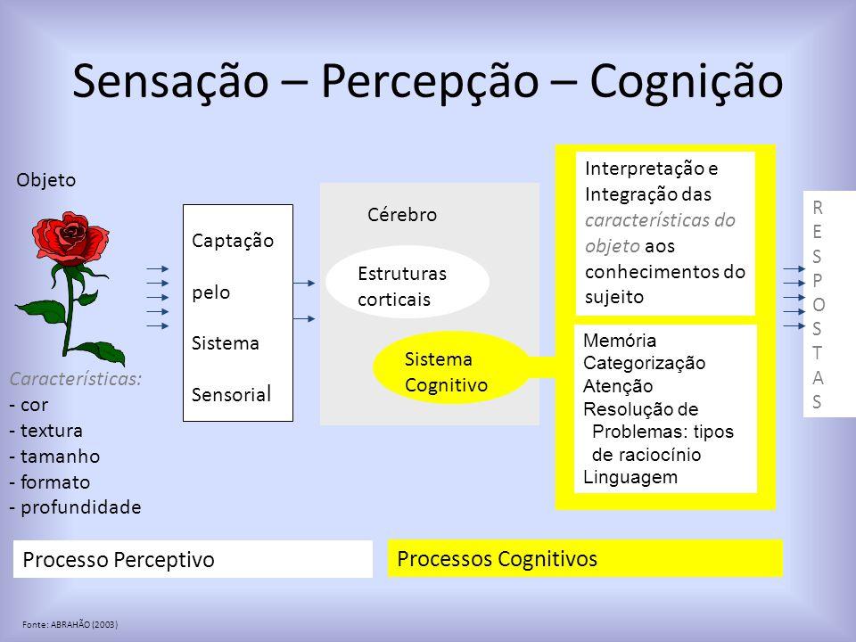 Sensação – Percepção – Cognição Objeto Características: - cor - textura - tamanho - formato - profundidade Captação pelo Sistema Sensoria l Cérebro Estruturas corticais Sistema Cognitivo Processo Perceptivo Processos Cognitivos Interpretação e Integração das características do objeto aos conhecimentos do sujeito RESPOSTASRESPOSTAS Memória Categorização Atenção Resolução de Problemas: tipos de raciocínio Linguagem Fonte: ABRAHÃO (2003)