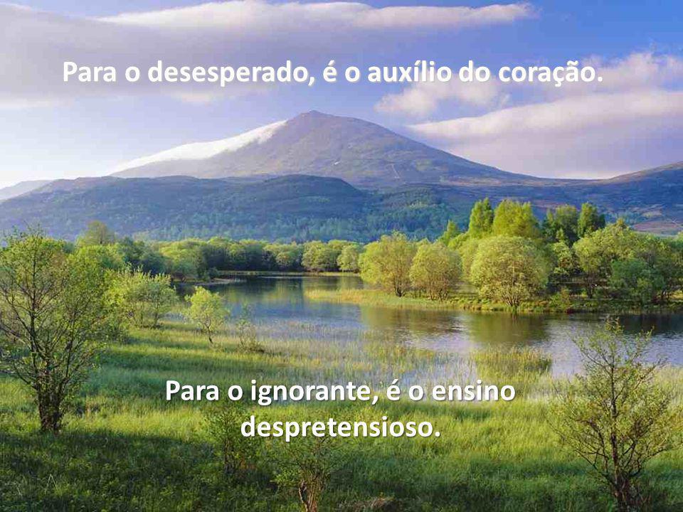 Para o desesperado, é o auxílio do coração. Para o ignorante, é o ensino despretensioso.