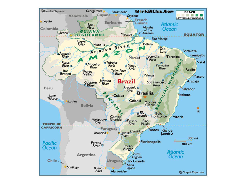 Capoeira Northeast Region - Salvador, Bahia Capoeira Angola (traditional and closer to the ground) Capoeira Regional (more acrobatic and modern)