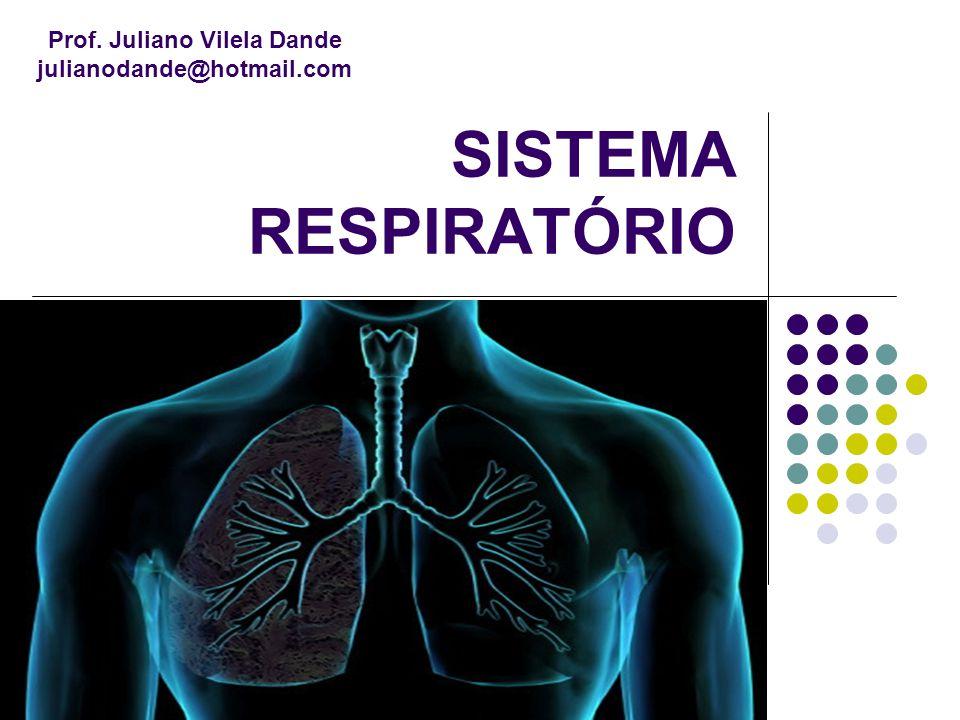 SISTEMA RESPIRATÓRIO Prof. Juliano Vilela Dande julianodande@hotmail.com