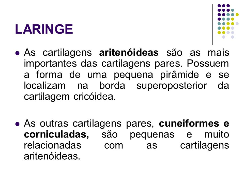 LARINGE As cartilagens aritenóideas são as mais importantes das cartilagens pares.
