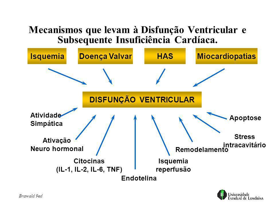 IsquemiaDoença ValvarHASMiocardiopatias DISFUNÇÃO VENTRICULAR Atividade Simpática Ativação Neuro hormonal Citocinas (IL-1, IL-2, IL-6, TNF) Endotelina