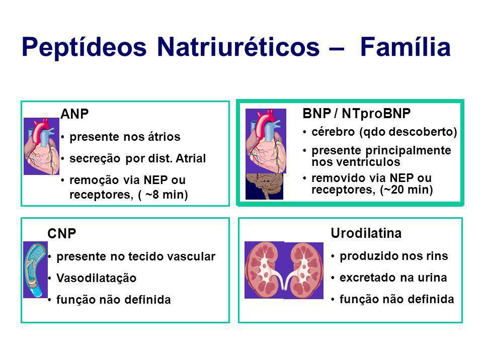 Peptídeos Natriuréticos – Família ANP presente nos átrios secreção por dist. Atrial remoção via NEP ou receptores, ( ~8 min) BNP / NTproBNP cérebro (q