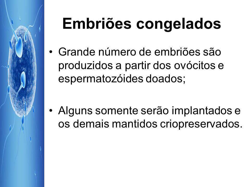 Embriões congelados Grande número de embriões são produzidos a partir dos ovócitos e espermatozóides doados; Alguns somente serão implantados e os dem