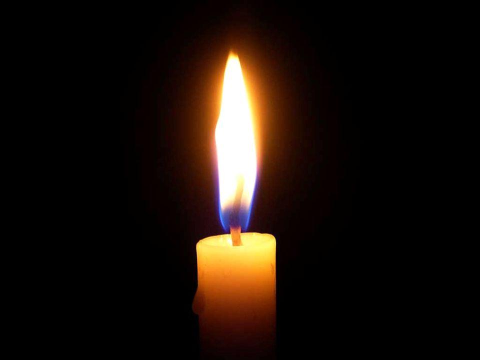 Para todos nós muita luz sempre!