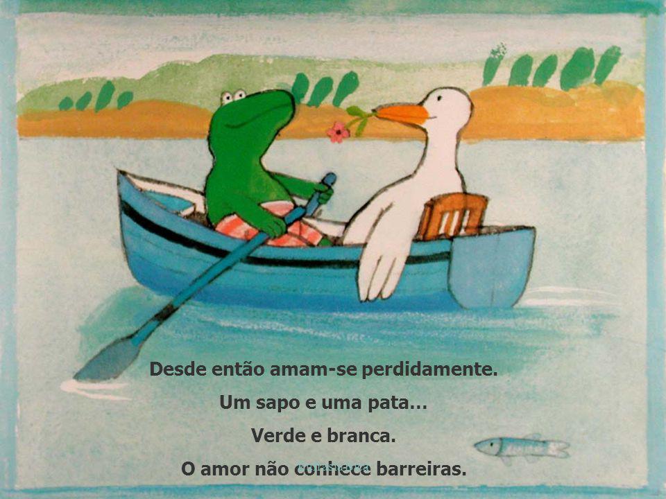 Desde então amam-se perdidamente. Um sapo e uma pata… Verde e branca. O amor não conhece barreiras. Eufrásia Bica