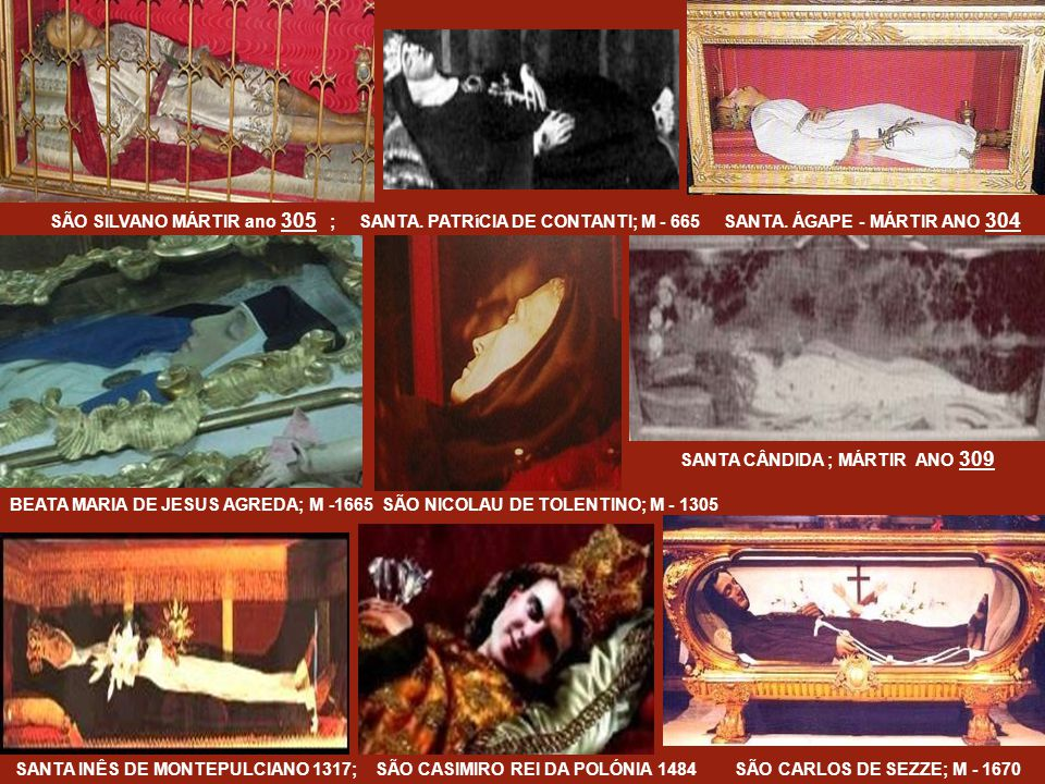 SÃO CAETANO CATANOSO ; M - 1963 SANTA MARIA GORETTI ; M - 1902 BEATA MARIA. DE JESUS LEÃO; M - 1731 SÃO LUIS ORIONE ; M - 1940 BEATA NARCISA DE JESUS