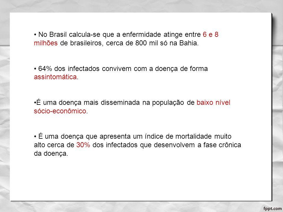No Brasil calcula-se que a enfermidade atinge entre 6 e 8 milhões de brasileiros, cerca de 800 mil só na Bahia. 64% dos infectados convivem com a doen